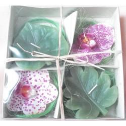 Bougie Orchidée et feuille