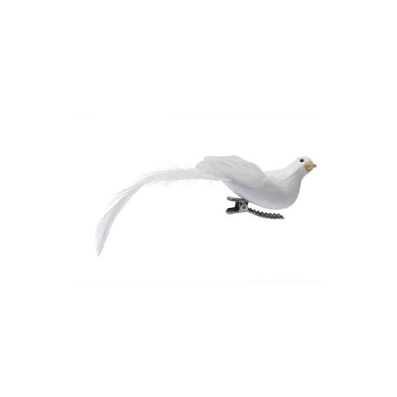 Oiseau lyre sur pince