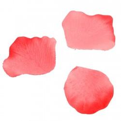 Pétales de rose Rouge