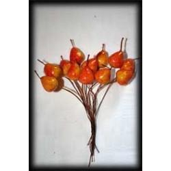 Bouquet de 12 Poires orangées