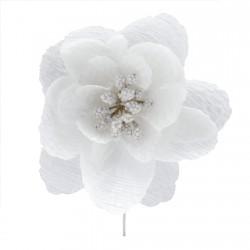 Fleur de camélia Blanche