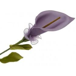 Arum lilas foncé avec 5...