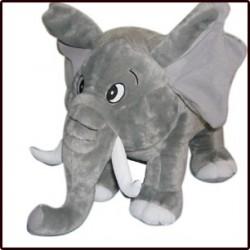 Eléphant gris