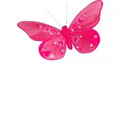 Papillon fuchsia avec...