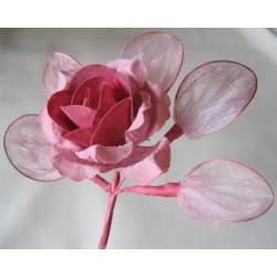 Rose avec 5 porte-dragées