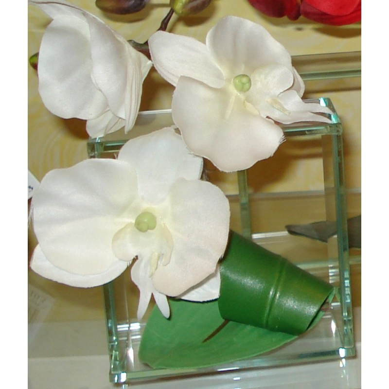 DECO CARRE ORCHIDEE BLANCHE